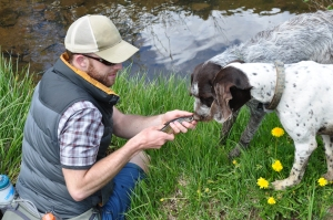 The author letting the dogs get a good look at the catch of the day