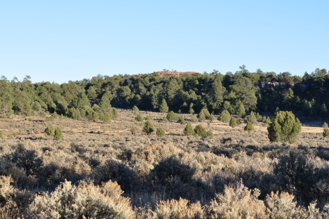 The landscape of the western side of unit 5B