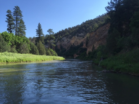 A calm bend in the Rio Chama Canyon WIlderness.